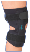 gripper_hinged_knee_side.png